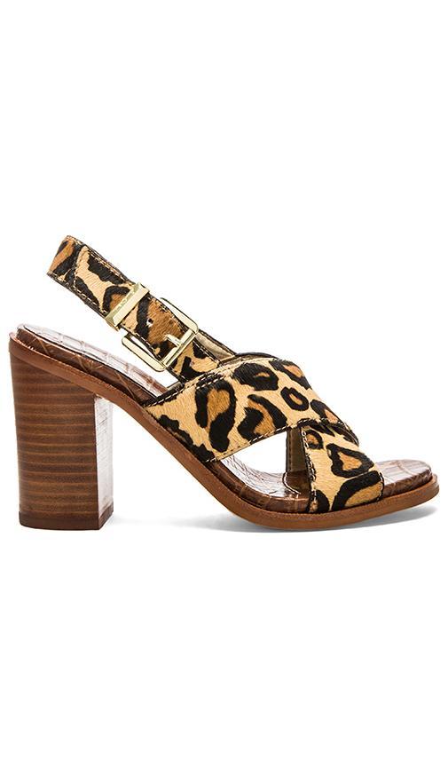 Sam Edelman Ivy Sandal in New Nude Leopard