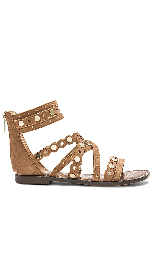 Sam Edelman Geren Sandal in Brown