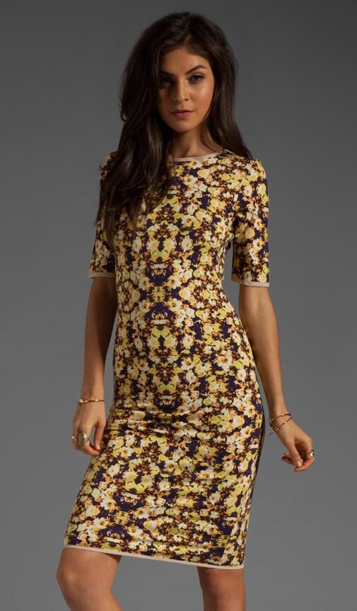 Sina Dress