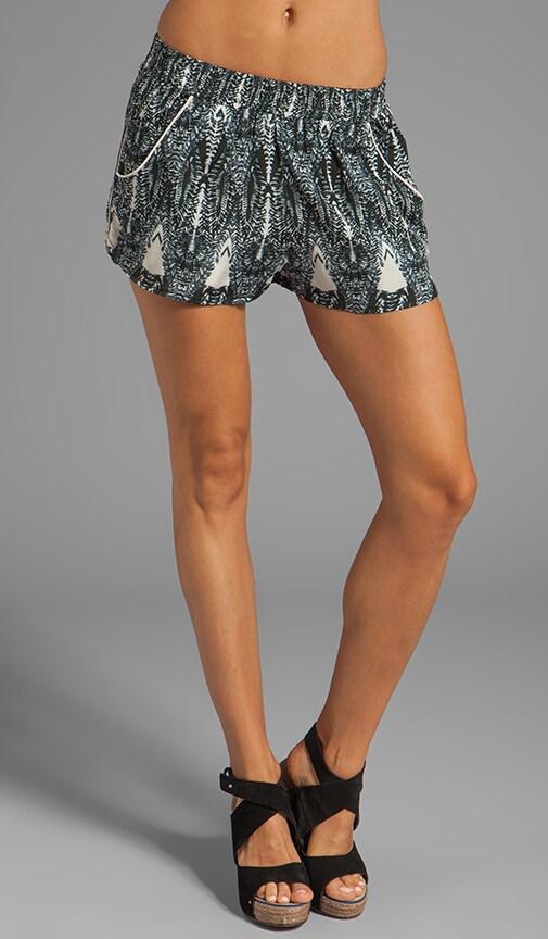 Teshi Shorts