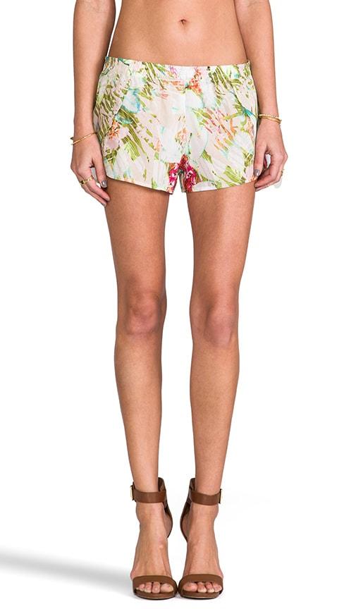 Loani Shorts