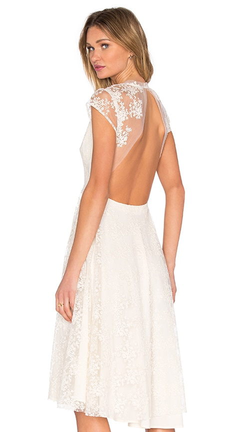 SAU Aaliyah Backless Lace Dress in Cream