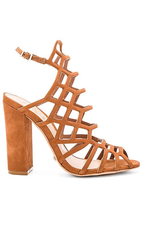 Schutz Jaden Heel in Brown