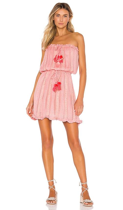 Anoushka Dress