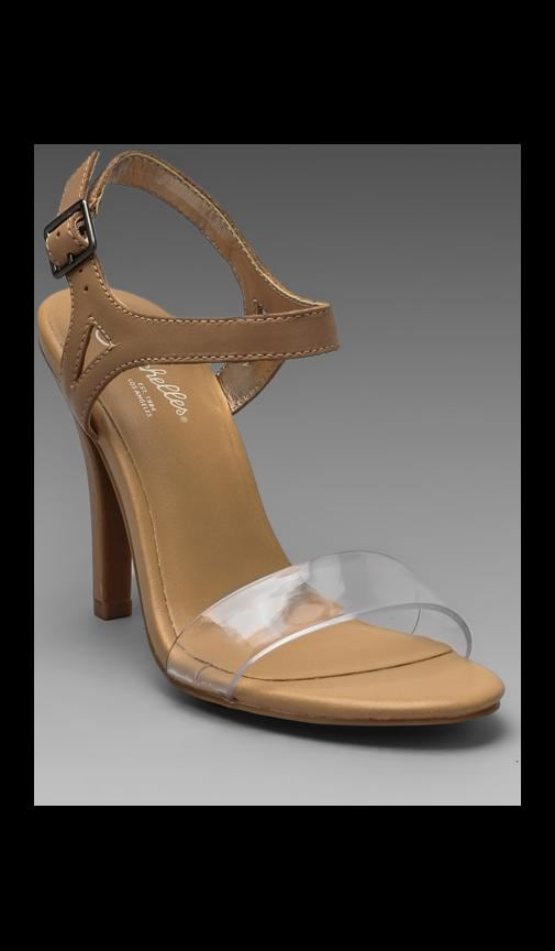 Saffron Heel