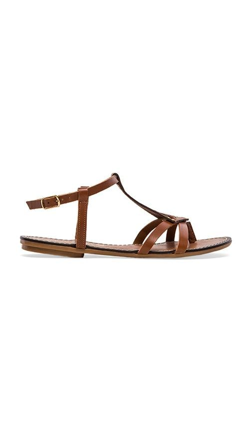 Transfer Gladiator Sandal