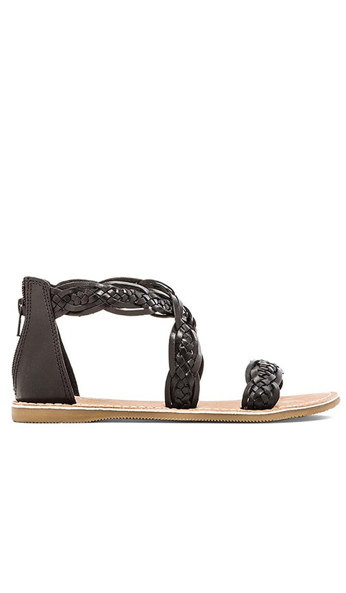 Seychelles Scorpio Sandal in Black