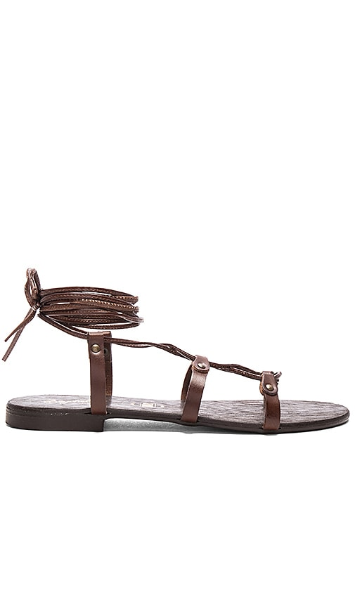 Seychelles Gawk Sandal in Brown