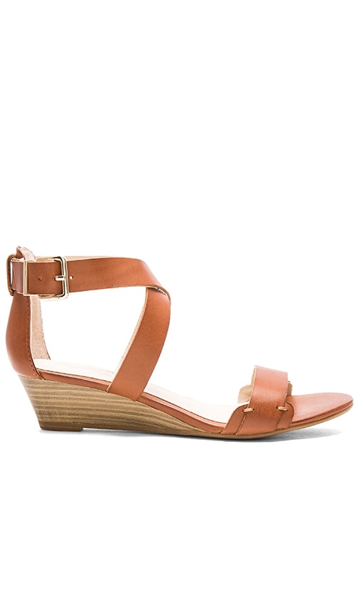 Seychelles Inspect Sandal in Brown