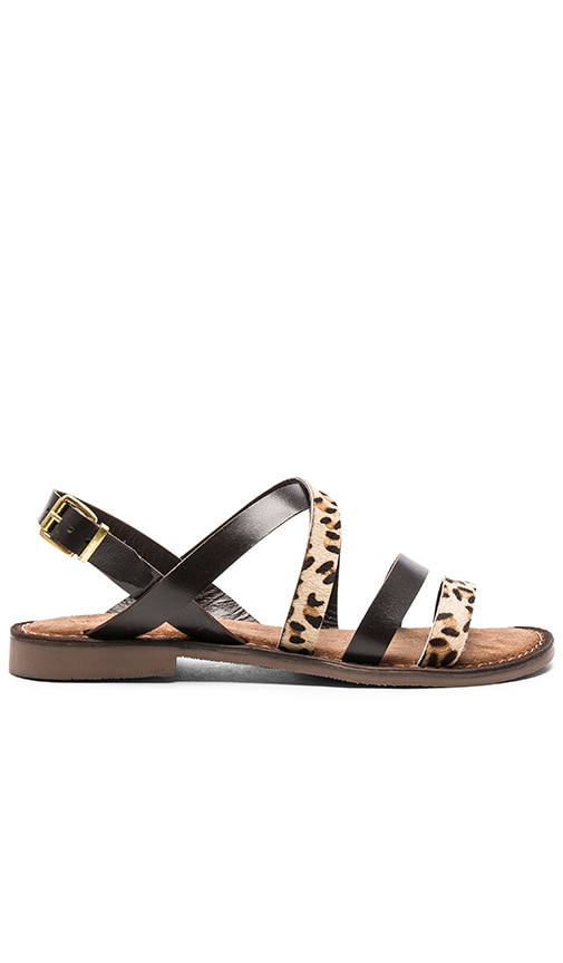 Seychelles Onward Calf Hair Sandal in Black