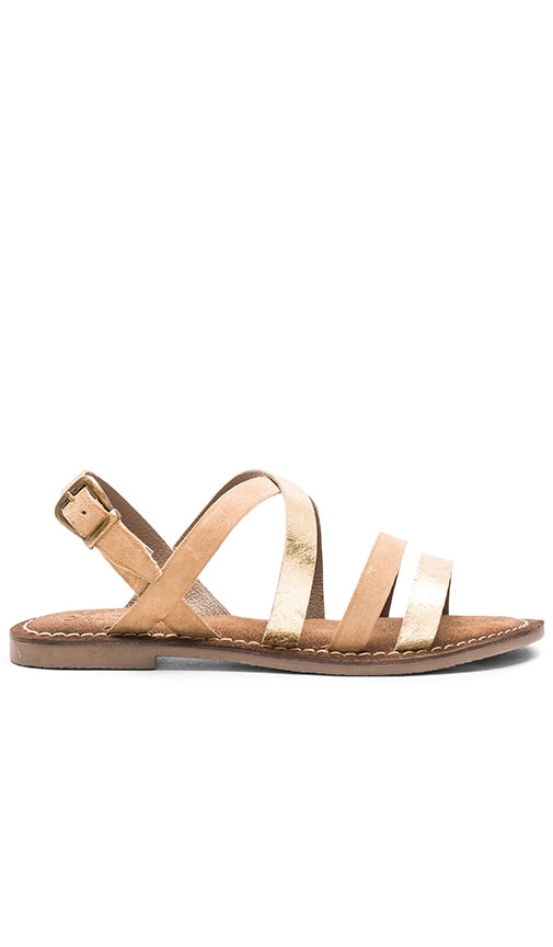 Seychelles Onward Calf Hair Sandal in Taupe & Gold