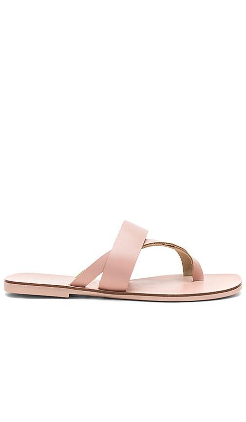 Seychelles Destiny Sandal in Pink