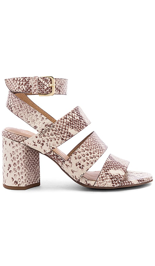 Antiques Heel