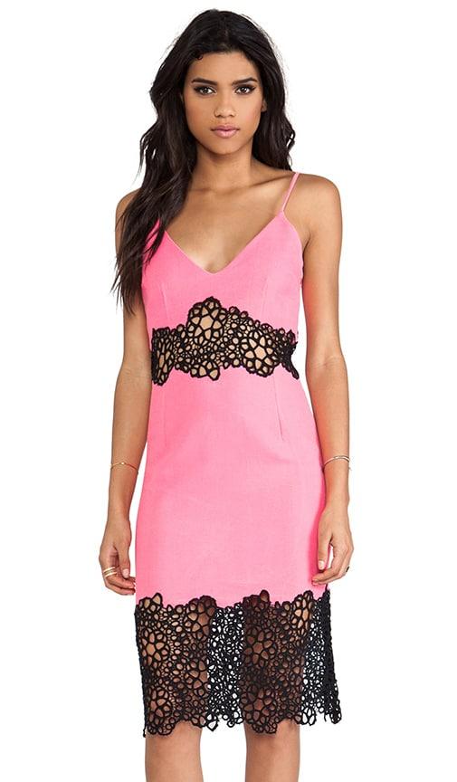 Honey Comb Lace Dress