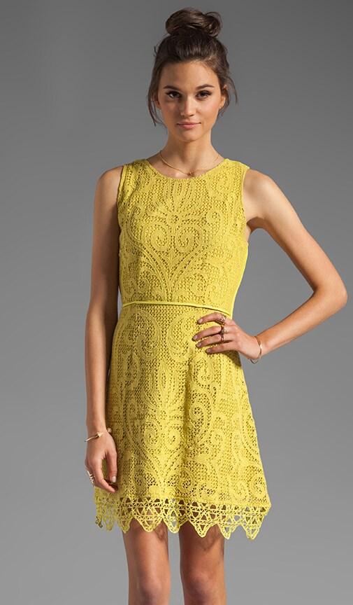 Noveau Crochet Flip Party Dress