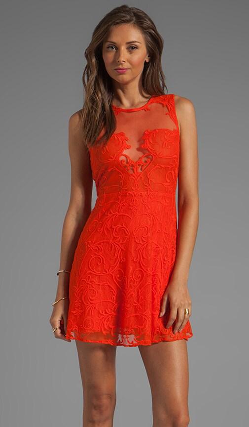 Nouveau Mesh and Lace Flip Dress
