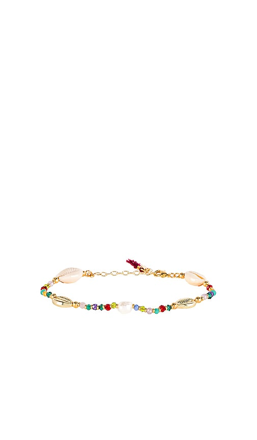 Pacific Shell Clasp Bracelet