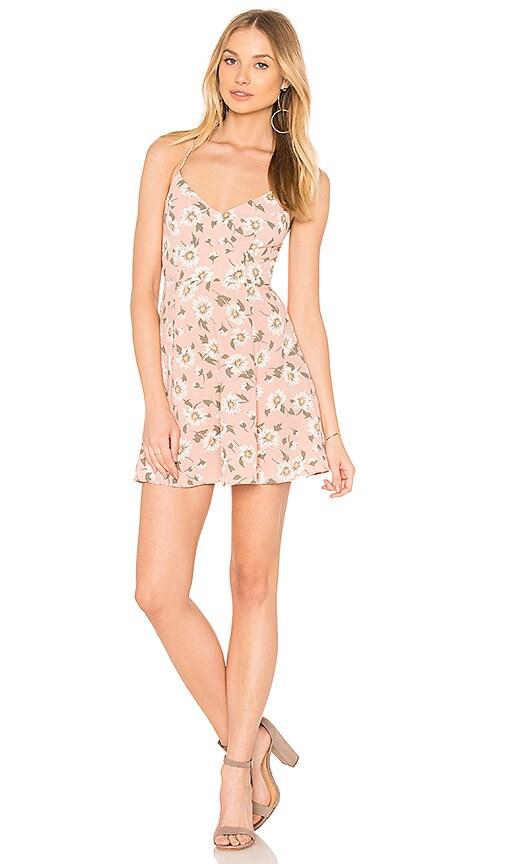 Show Me Your Mumu Victoria Mini Dress in Pink