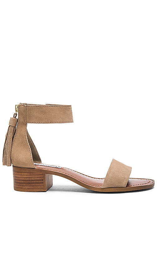 cd86be653e7 Steve Madden Darcie Sandal in Taupe Suede