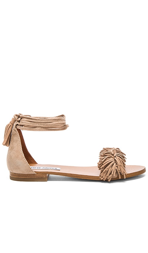 Steve Madden Sweety Sandal in Blush Suede