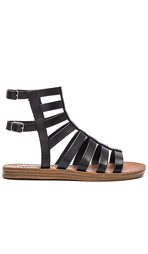 Steve Madden Beastt Sandal in Black Leather