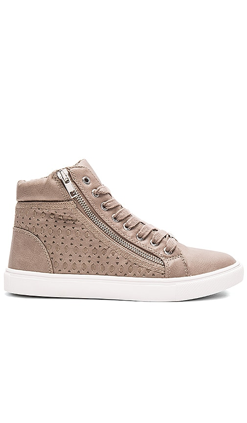 Steve Madden Eiris Sneaker in Gray
