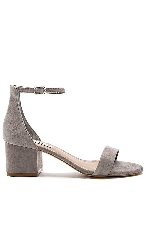 Steve Madden IRENEE - Sandals - grey