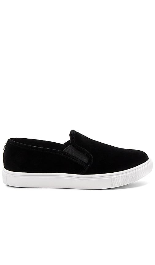 Steve Madden ECNTRCV Sneaker in Black