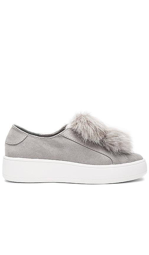 Steve Madden Bryanne Faux Fur Sneaker in Gray