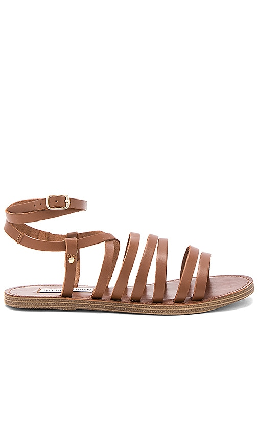Steve Madden Gallia Sandal in Brown