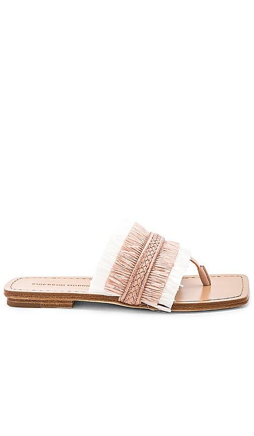 Sigerson Morrison Avis Sandal in Blush