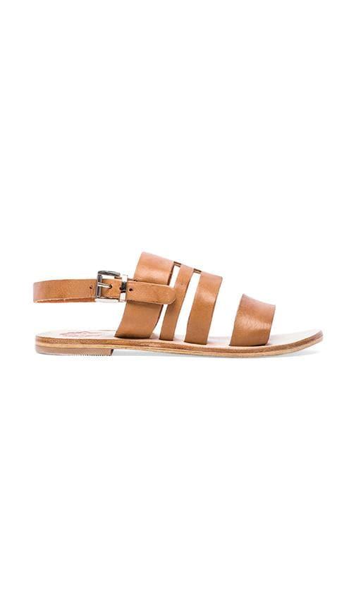 Phenoix Sandal