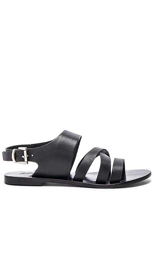 Sol Sana Moe Sandal in Black