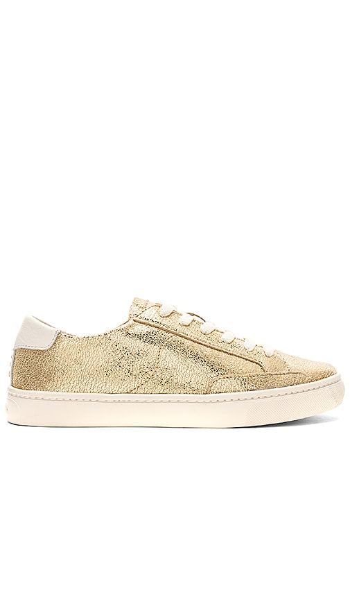 Soludos Metallic Lace Up Sneaker in Metallic Gold