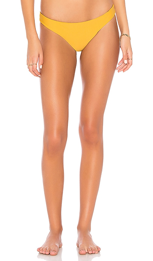 Aruba Brief Bikini Bottom
