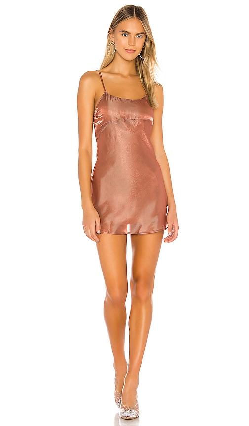 Caelynn Mini Dress