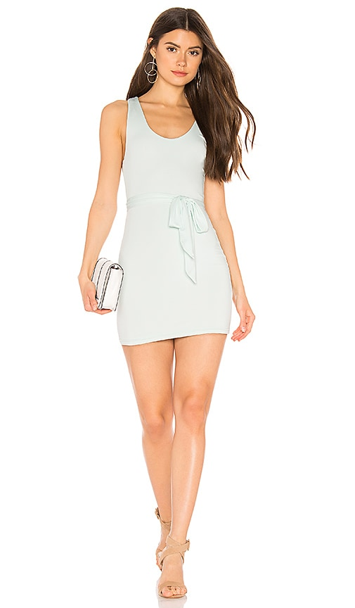 Heron Belted Mini Dress