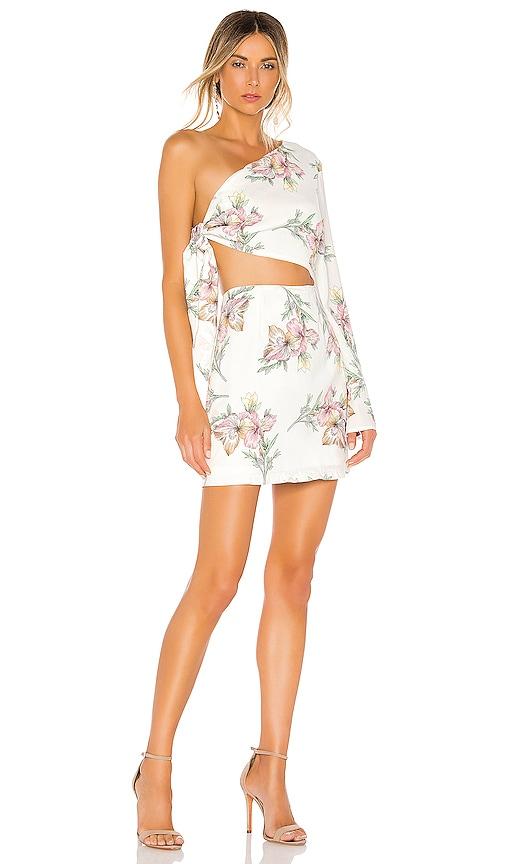 Essie One Shoulder Dress