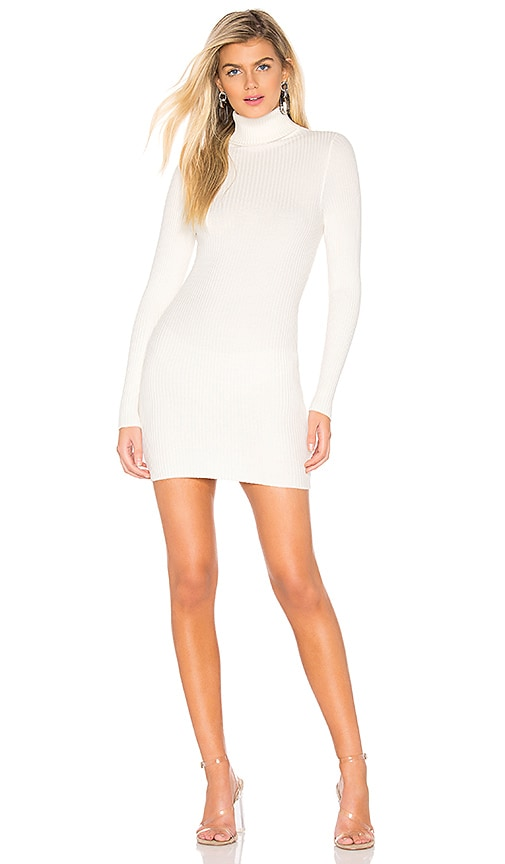Meagan Turtle Neck Dress