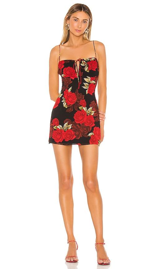 Sedale Mini Dress