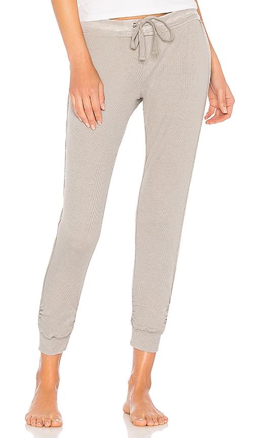 Splendid Rib Jogger Pant in Gray
