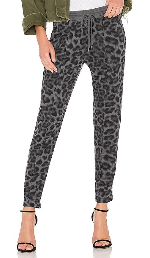 Splendid Leopard Sweatpant in Gray