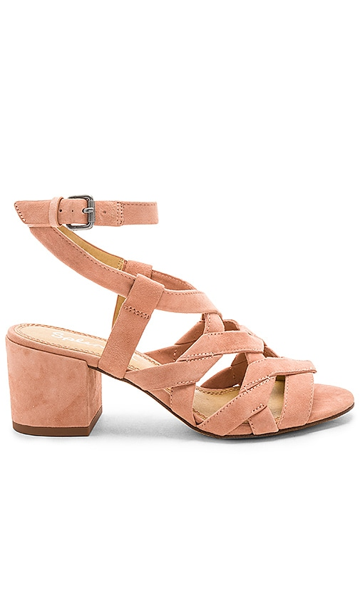 Splendid Barrymore Heel in Pink