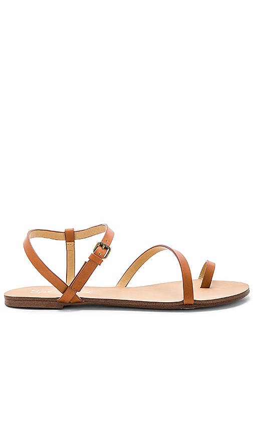 Splendid Flower Sandal in Cognac