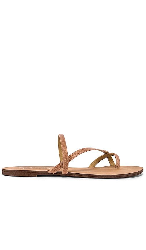 Trenton Sandal