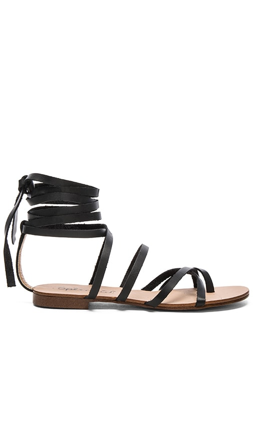 Splendid Carly Sandal in Black