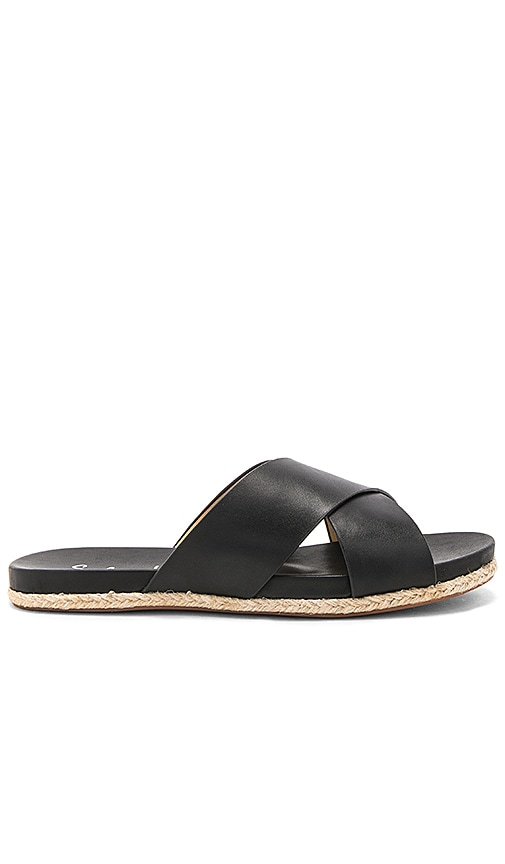 Splendid Jenni Sandal in Black