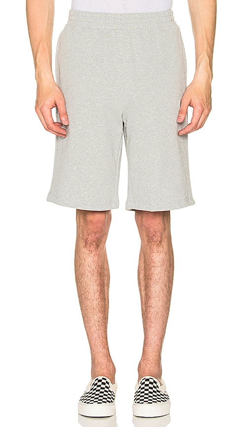 Stussy Stock Terry Shorts in Gray