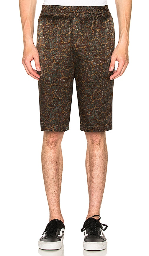 Stussy Reversible Paisley Short in Olive