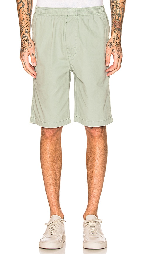 Stussy Brushed Beach Short in Sage